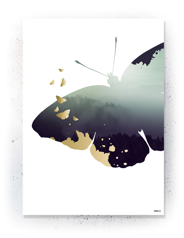 Plakat / canvas / akustik: Sommerfugle (Fall)
