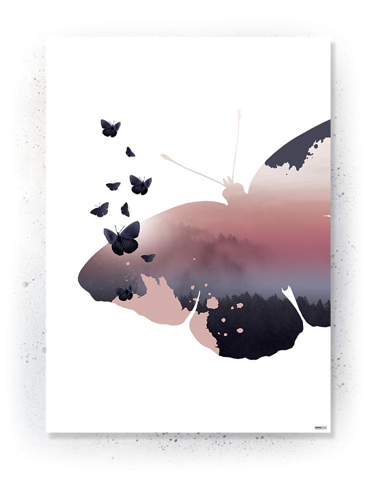 Plakat / canvas / akustik: Sommerfugl (MIDSOMMER)