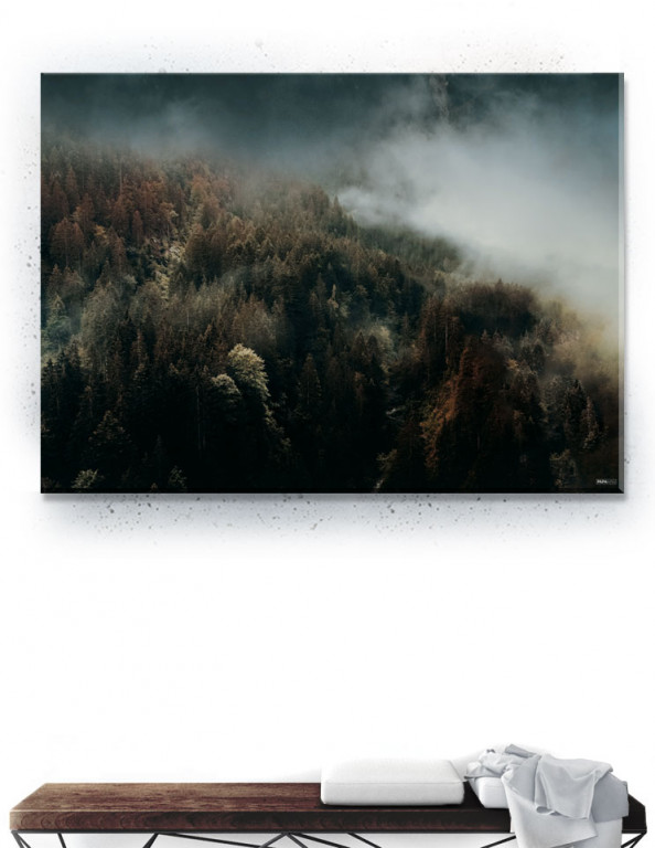 Plakat / Canvas / Akustik: Autumn Forest (Withered)