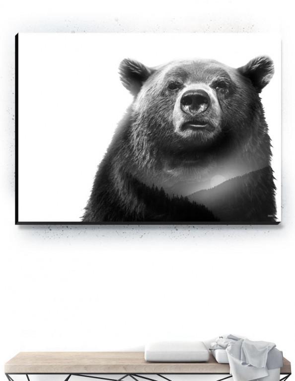 Plakat / Canvas / Akustik: Bear 2 / Panorama (Black)
