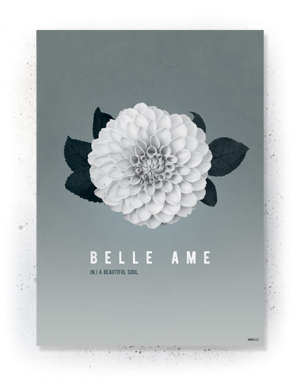 Plakat / Canvas / Akustik: Belle Ame (Thoughts)