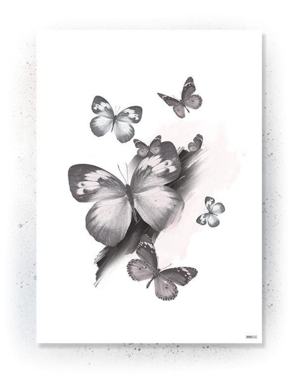 Plakat / canvas / akustik: Sommerfugle (Faded)
