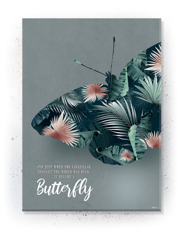 Plakat / canvas / akustik: Butterfly (Juncture)