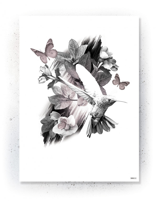 Plakat / canvas / akustik: Hummingbird (Faded)