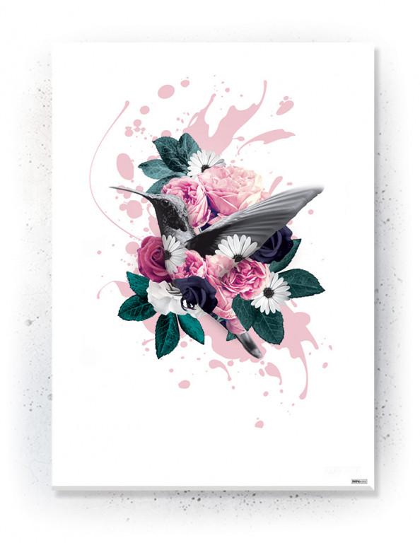 Plakat / Canvas / Akustik: Hummingbird (Floral)