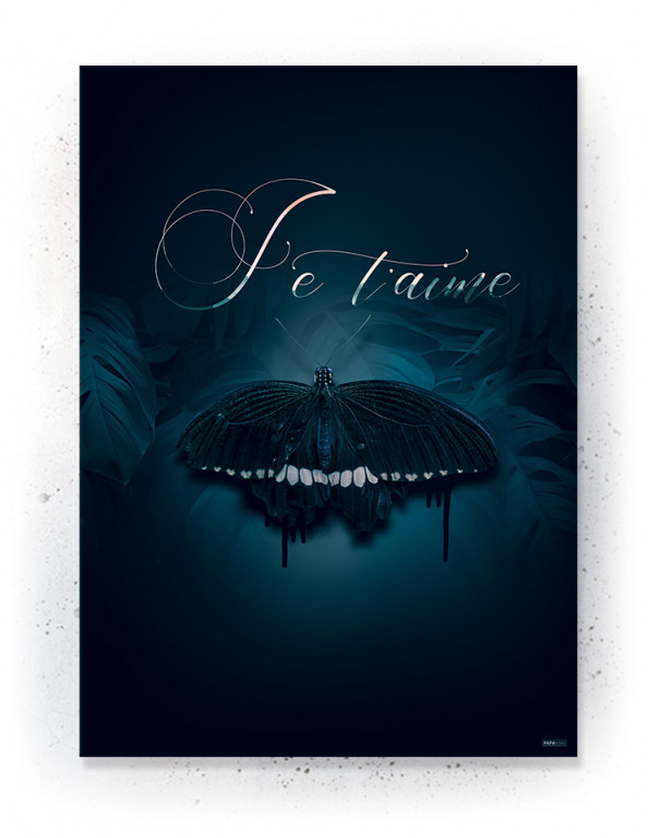 Plakat / CANVAS: J'e Taime (Earth)