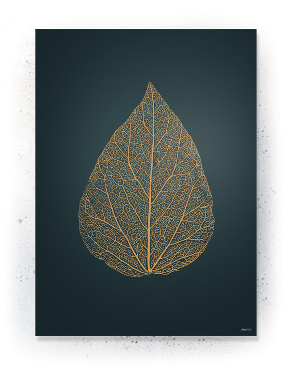 Plakat / Canvas / Akustik: Leaf 2 (Withered)