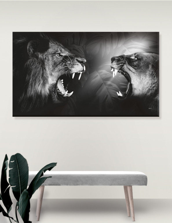 Plakat / Canvas / Akustik: Lions / Løve (r) Monochrome (Animals / Panorama)