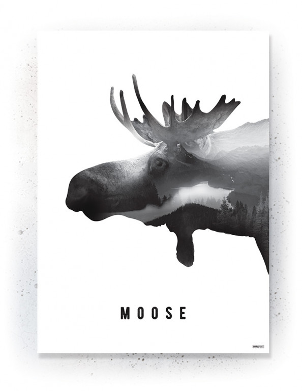 Plakat / Canvas / Akustik: Moose (Black)