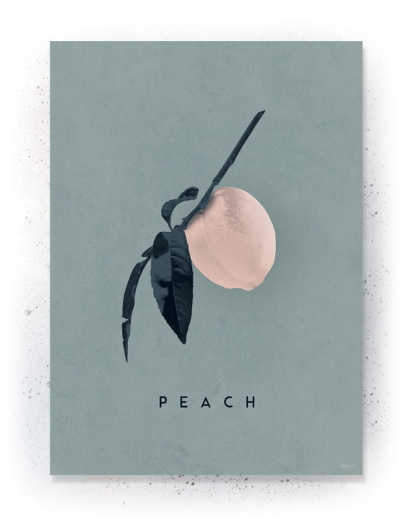 Plakat / CANVAS: Peach (Earth)