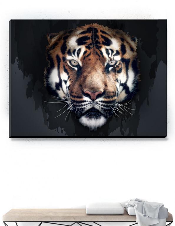 Plakat / Canvas / Akustik: Scar (Animals)
