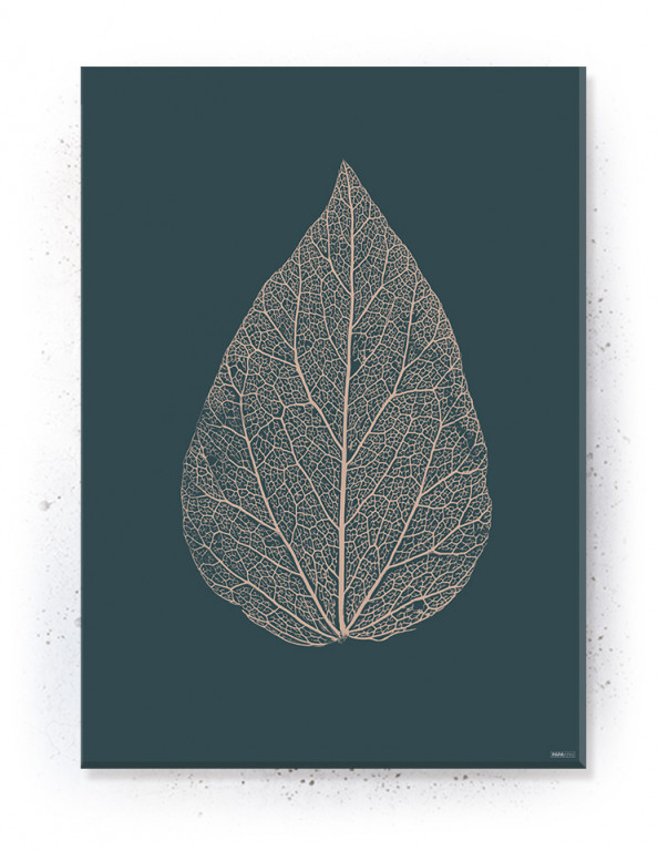 Plakat / canvas / akustik: Skeleton Leaf I (Dust)