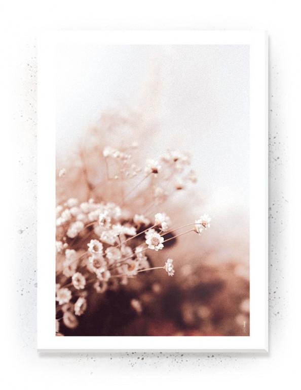 Plakat, Canvas, Akustik: Tørrede Blomster V (Withered)
