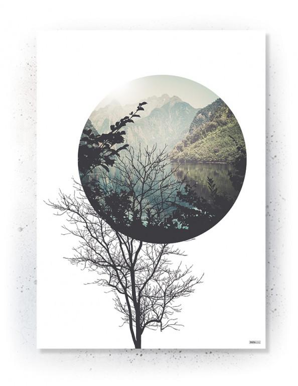 Plakat / CANVAS: Tree & Circle (Nature)