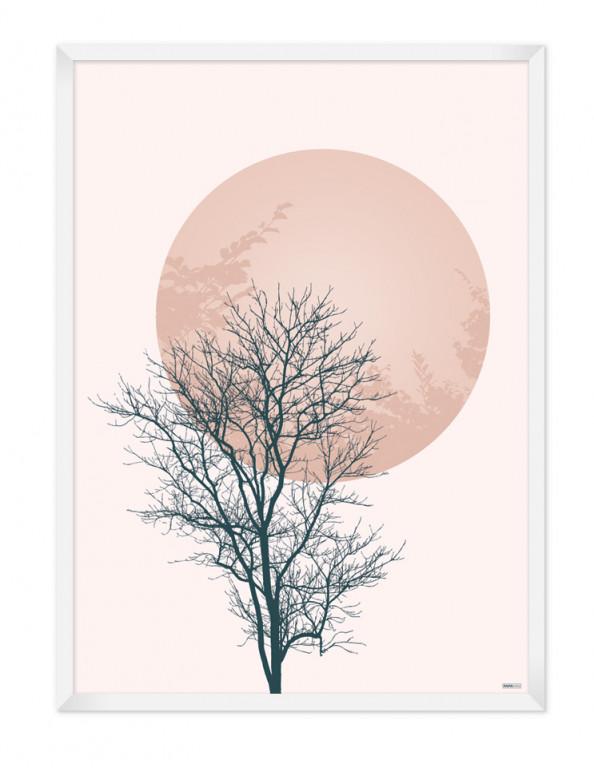Plakat: Tree & Circle (Spring)