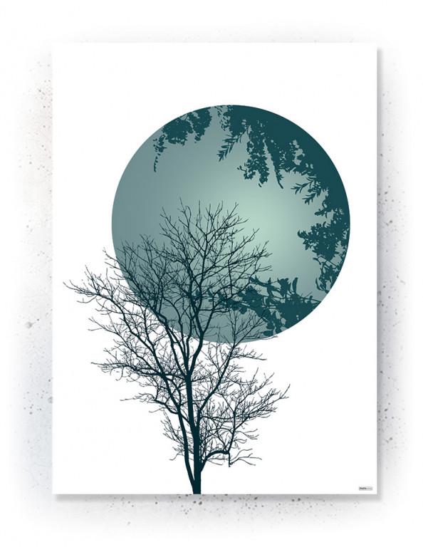 Plakat / Canvas / Akustik: Tree & Circle (Thoughts)