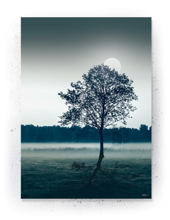 Plakat / CANVAS: Tree in field (Earth)