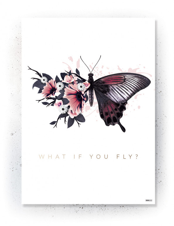 Plakat / canvas / akustik: What if you fly? (MIDSOMMER)