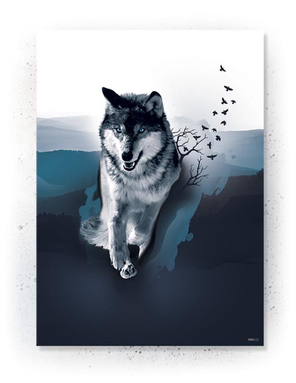 Plakat / Canvas / Akustik: Wolf & Birds (Indigo)