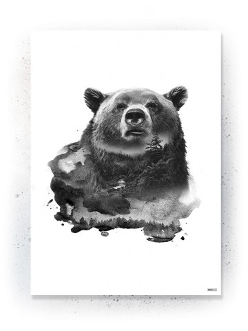 Plakat / Canvas / Akustik: Bear 1 (Animals)