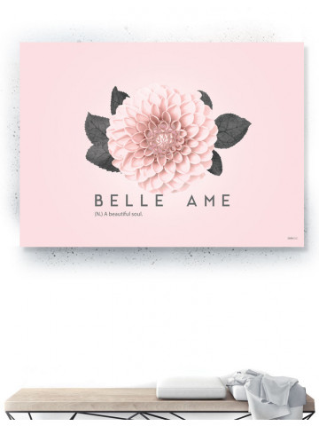Plakat / Canvas / Akustik: Belle Ame (Flush Pink)
