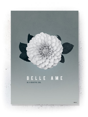 Plakat / Canvas / Akustik: Belle Ame (Thoughts)