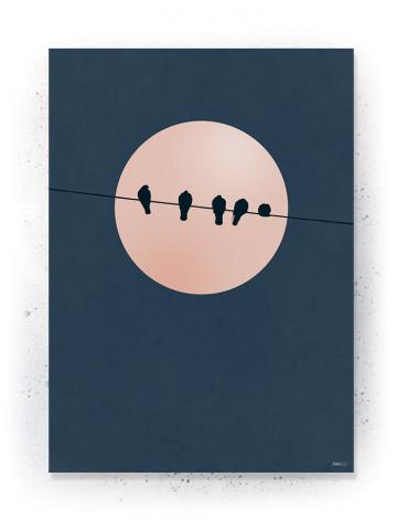 Plakat / CANVAS: BIRDS 2 (Earth)