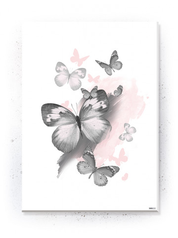 Plakat / Canvas / Akustik: Butterflies (Flush Pink)