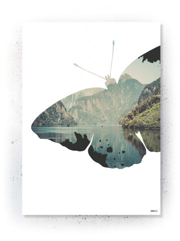 Plakat / CANVAS: Butterfly (Nature)