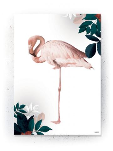 Plakat / CANVAS: Flamingo (Earth)