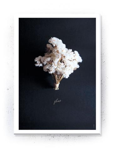 Plakat / Canvas / Akustik: Fleurs / passepartout (Stark)