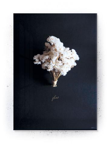 Plakat / Canvas / Akustik: Fleurs (Stark)