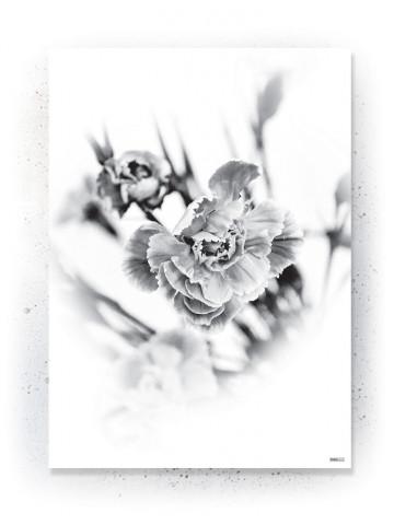 Plakat / Canvas / Akustik: Simpel blomst Sort/hvid (Black)