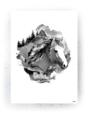Plakat / Canvas / Akustik: Hest (Animals)