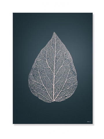 Plakat/Canvas: Leaf 2 (BRIGHT)
