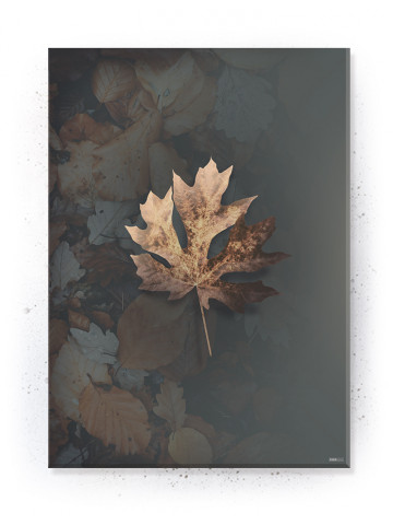 Plakat / canvas / akustik: Leaf 3 (Earth)