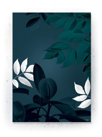 Plakat / CANVAS: Leaves (Earth)