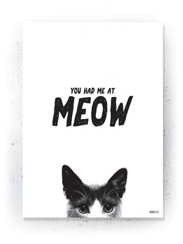 Plakat / Canvas / Akustik: MEOW (Quote Me)