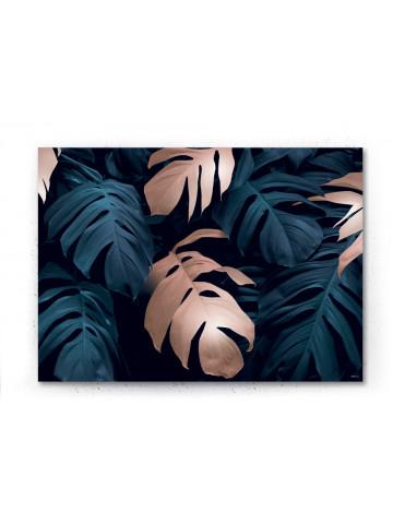 Plakat / canvas / akustik: Monstera 7 / Panorama (Earth)