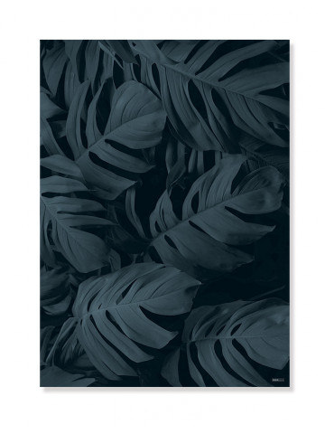 Plakat/Canvas: Monstera (BRIGHT)