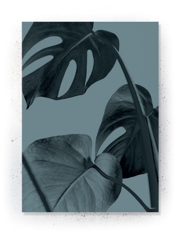 Plakat / Canvas / Akustik: Monstera plante (Thoughts)
