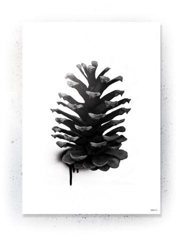 Plakat / Canvas / Akustik: Grankogle (Black)