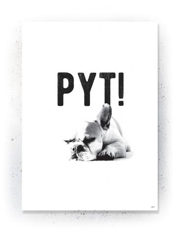 Plakat / Canvas / Akustik: Pyt! (Quote Me)
