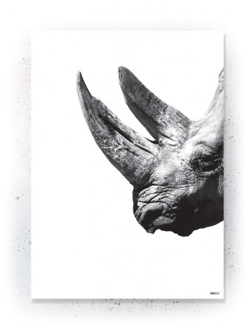 Plakat / Canvas / Akustik: Rhino (Animals)