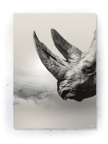 Plakat / Canvas / Akustik: Rhino II (Off-White)
