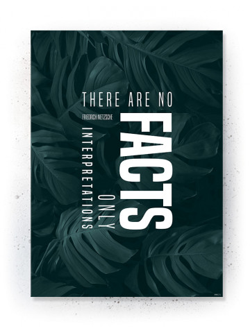 Plakat / Canvas / Akustik: There are no Facts (Thoughts)