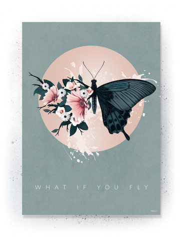 Plakat / CANVAS: What if you fly (Earth)