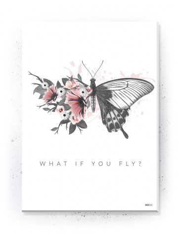 Plakat / Canvas / Akustik: What if you fly? (Flush Pink)