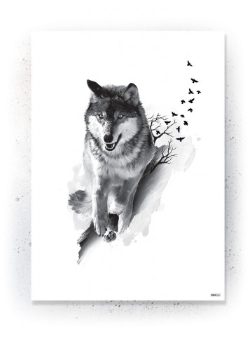 Plakat / Canvas / Akustik: Wolf & Birds (Animals)