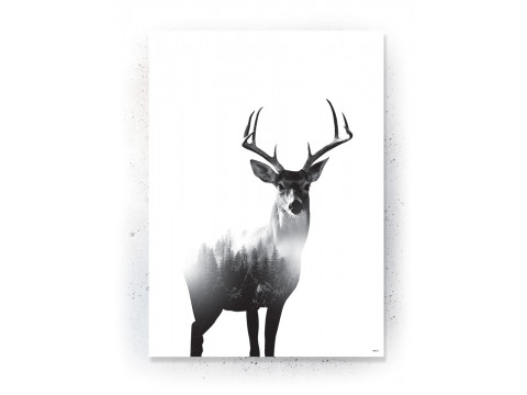 Plakat / Canvas / Akustik: Deer 3 (Animals)